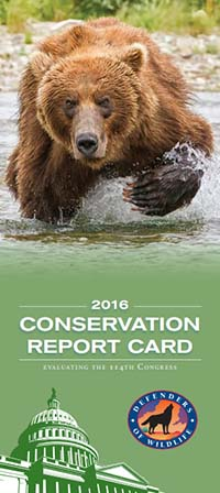 Conservation Report Card 2016
