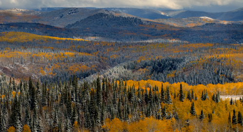 Medicine Bow Mountains and National Forest, © Howie Garber
