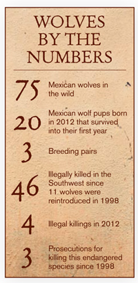 Wolves by the Numbers
