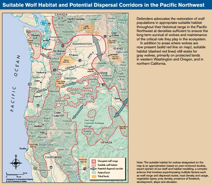 Places for wolves in the Pacific Northwest, © Defenders of Wildlife