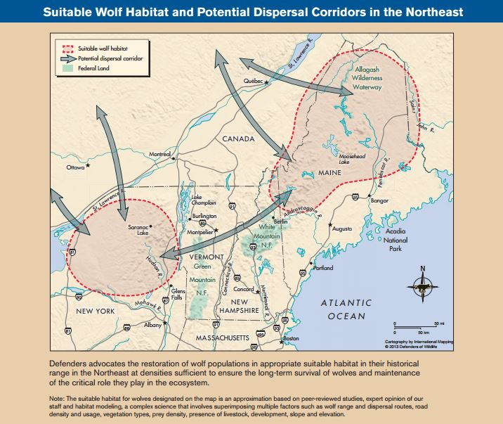 Wolves In The Northeast Defenders Of Wildlife - Maps of the location of wolves in the us
