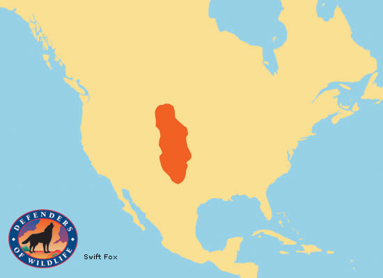 Swift Fox Range Map