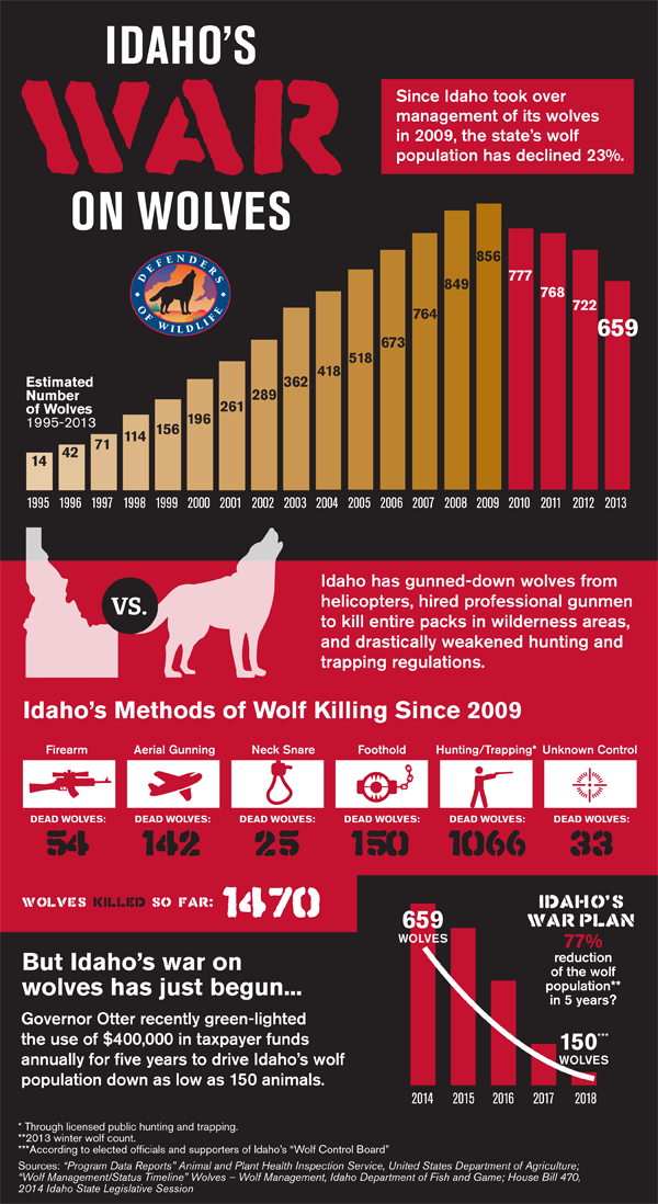 War On Wolves Infographic
