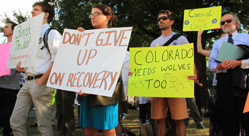 DC Wolf Rally, © Defenders of Wildlife