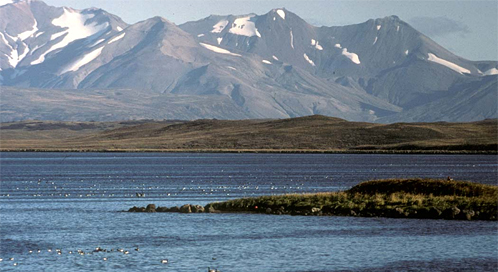 Izembek National Wildlife Refuge, Photo: U.S. Fish and Wildlife Service