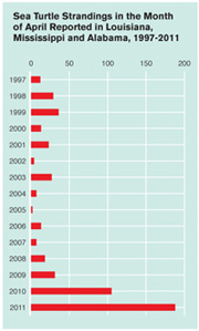 Sea Turtle Strandings, 1997-2011