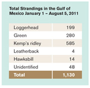 Sea Turtle Strandings, January - July 2011