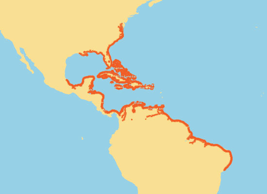 Florida Manatee Range Map