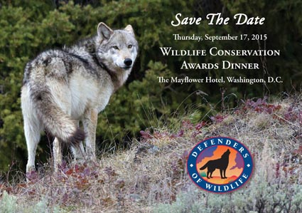 Save the Date: Defenders Wildlife Conservation Awards Dinner 9/17/2015